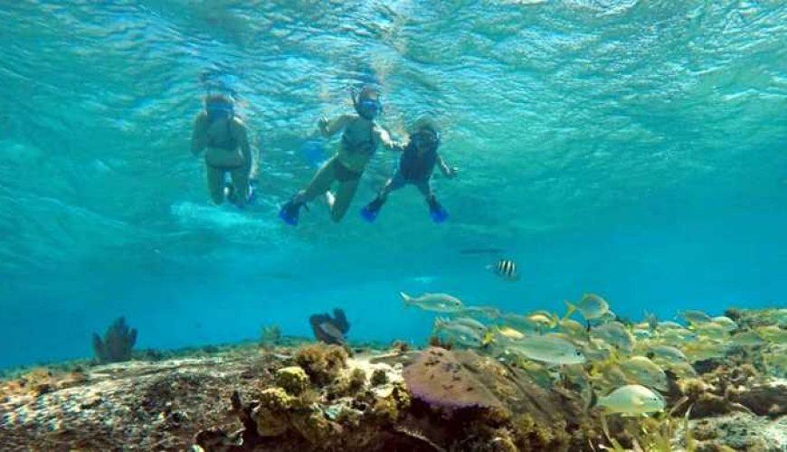 Cozumel Private snorkeling